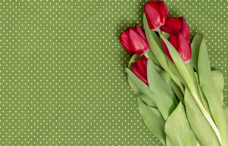 Обои Red, tulips. Разное foto 12