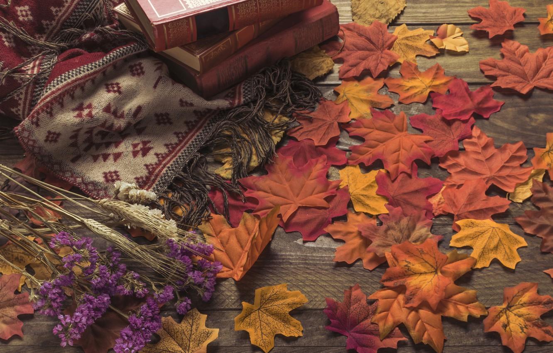 Фото обои осень, листья, цветы, фон, дерево, colorful, книга, wood, background, autumn, leaves, осенние, maple