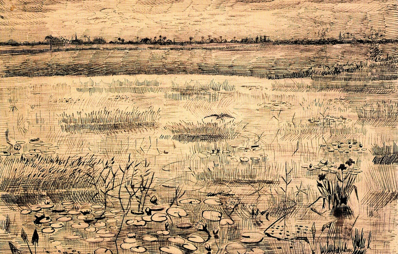 Фото обои кувшинки, Винсент ван Гог, Water Lillies, Marsh with