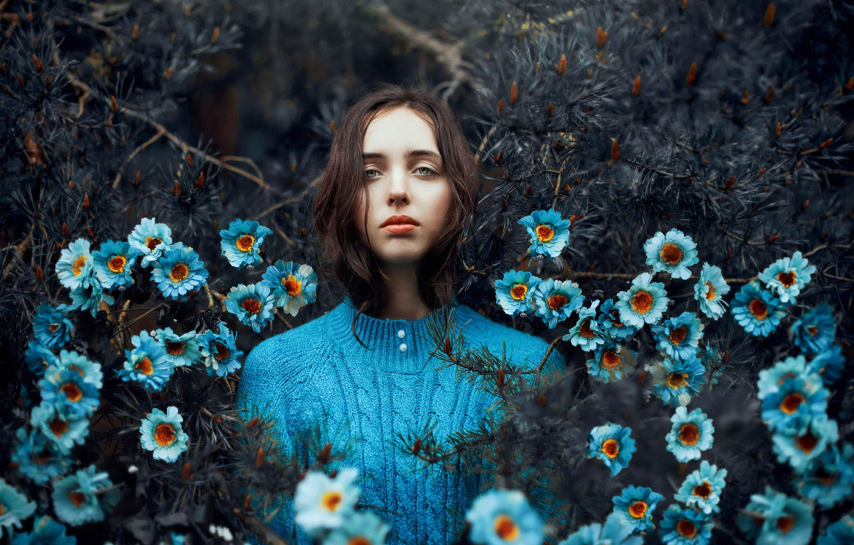 Фото обои girl, forest, blue, flowers, needles, Ronny Garcia