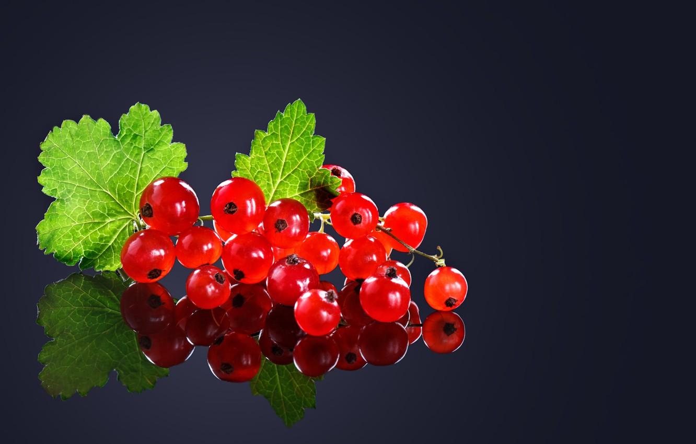 Фото обои листья, макро, ягоды, фон, черный, смородина, спелая