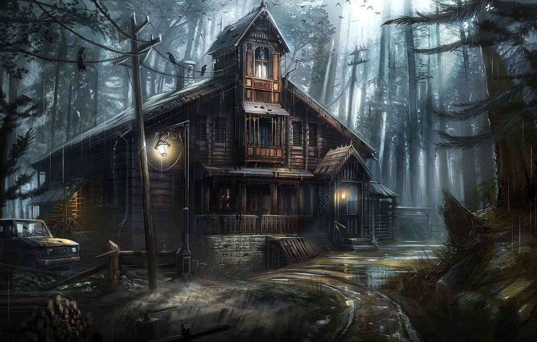 Фото обои дом, провода, ели, чаща, фонарь, вороны, лужи, автомобиль, ливень