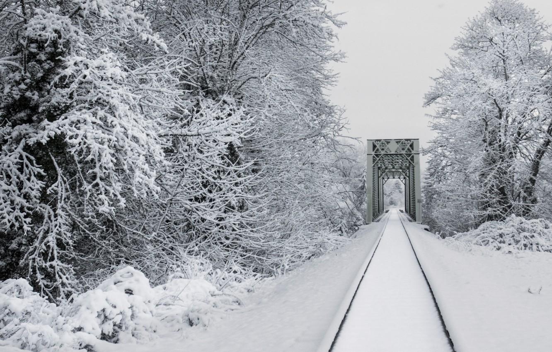 Фото обои зима, снег, деревья, природа, рельсы, железная дорога