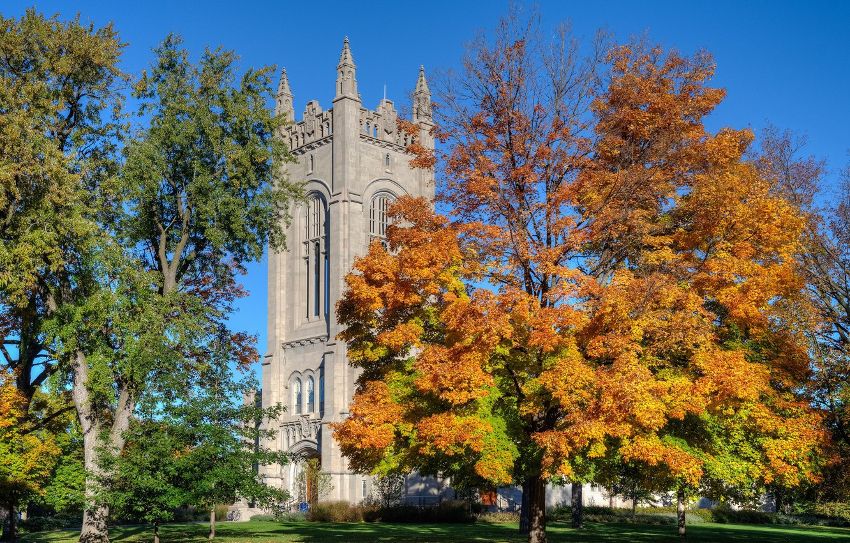 Фото обои осень, деревья, парк, башня