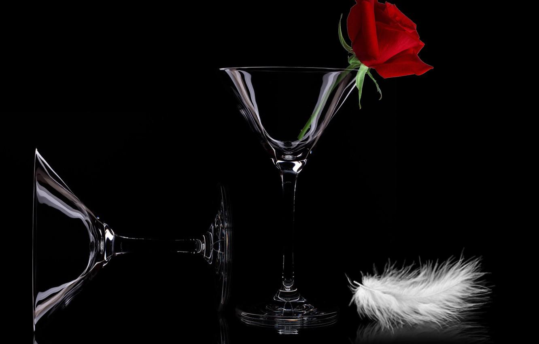 Фото обои flowers, celebration, cups, feather, still life closeup