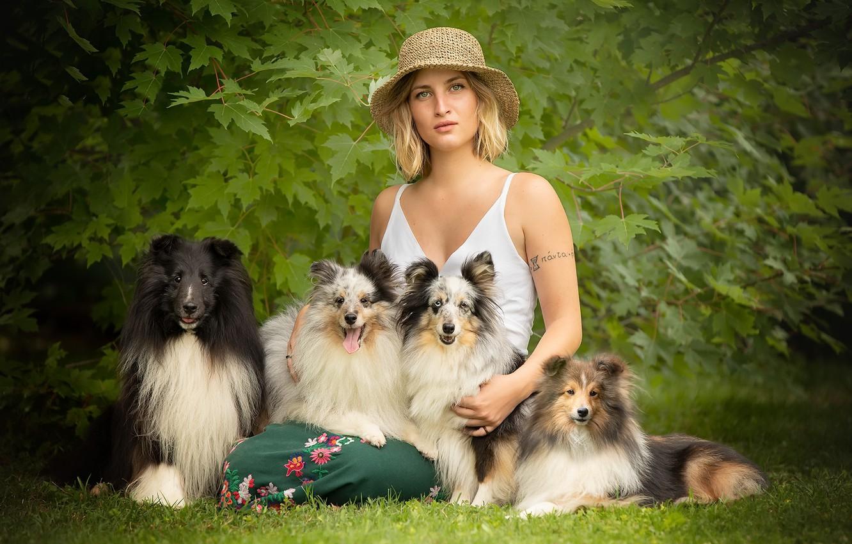 Фото обои собаки, лето, девушка