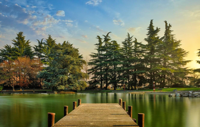 Фото обои лес, озеро, мостик