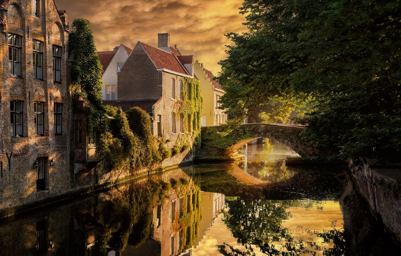 Фото обои город, река, заросли, дома, Бельгия, мостик, Брюгге