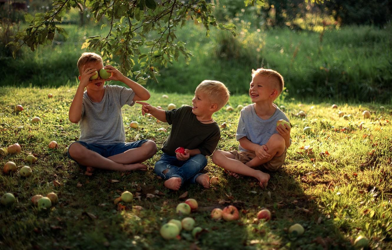 Фото обои лето, радость, счастье, природа, дети, детство, яблоки, мальчики, пацаны, Мария Круглова