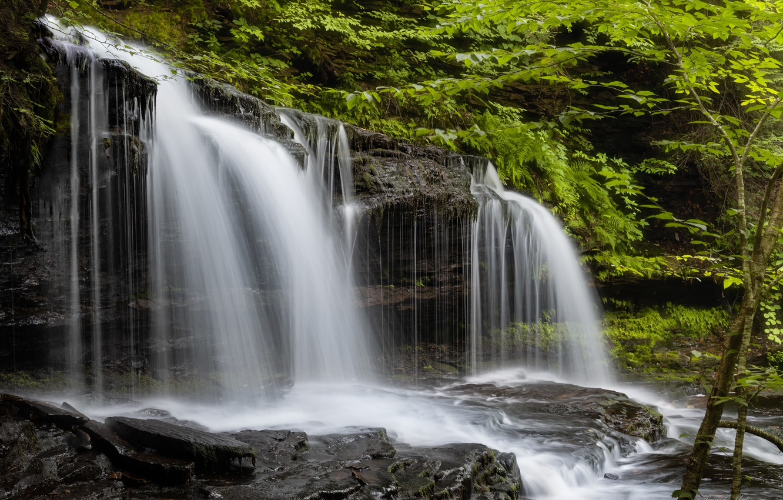 Фото обои лес, водопад, Пенсильвания, каскад, Pennsylvania, Ricketts Glen State Park, Парк штата Рикетс Глен, Mohawk Falls