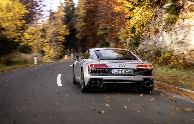 Фото обои осень, Audi, скорость, суперкар, Audi R8, вид сзади, Coupe, V10, 2020, RWD