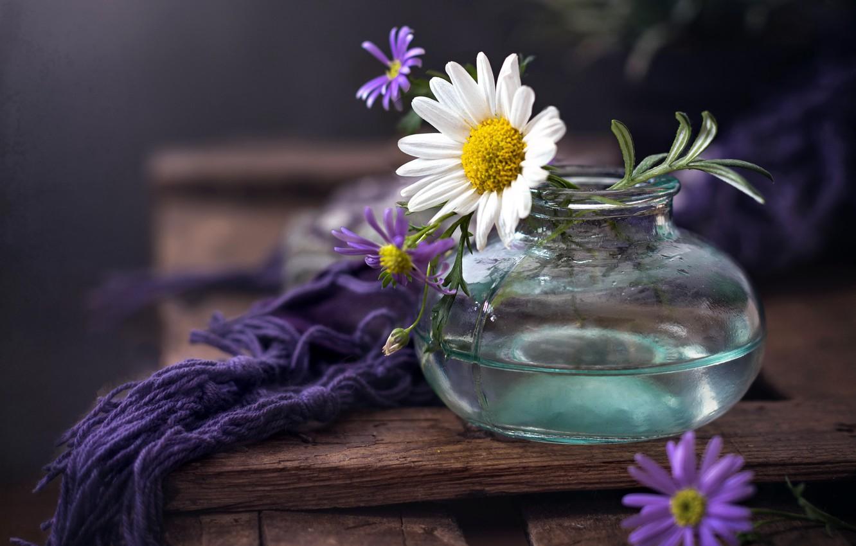 Фото обои цветы, фон, банка