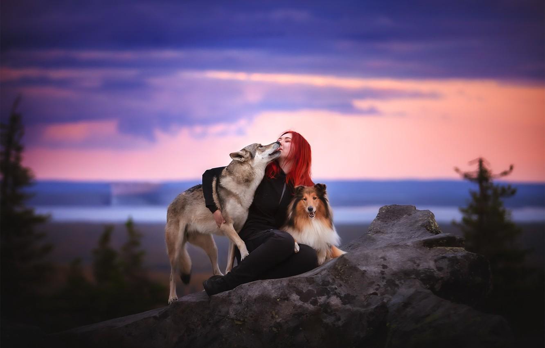 Фото обои собаки, девушка, природа