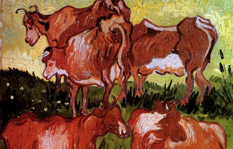 Фото обои коровы, Vincent van Gogh, Auvers sur Oise, Cows after Jordaens