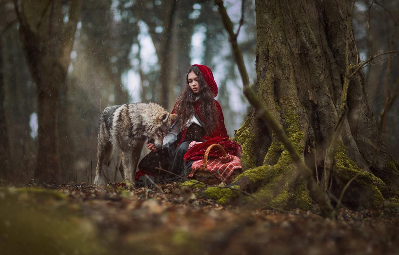 фото красной шапочки и волка из сказки