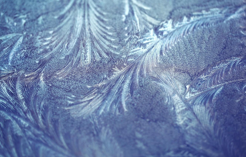 Фото обои иней, макро, узор, текстура, мороз