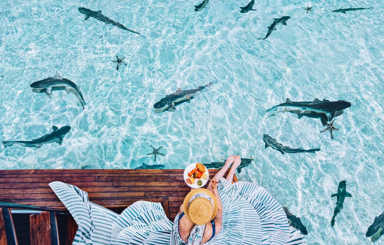 Фото обои вода, девушка, настроение, океан, ситуация, завтрак, платье, шляпка, акулы, Кристина Макеева