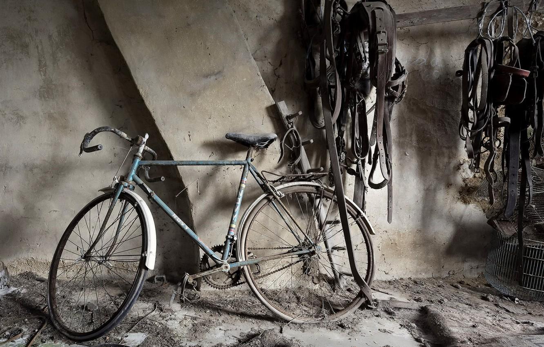 Фото обои велосипед, фон, подвал