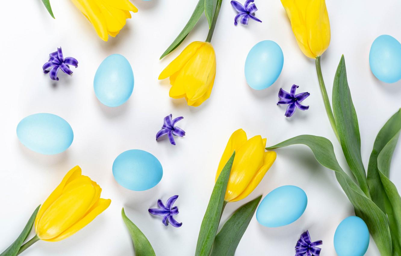 Фото обои цветы, яйца, Пасха, тюльпаны, белый фон, крашенки, жёлтые тюльпаны