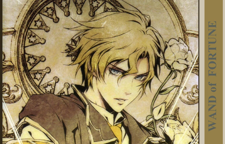 Фото обои парень, голубые глаза, белые розы, wand of fortune, жезл фортуны, Noel Valmore, by kagerou usuba