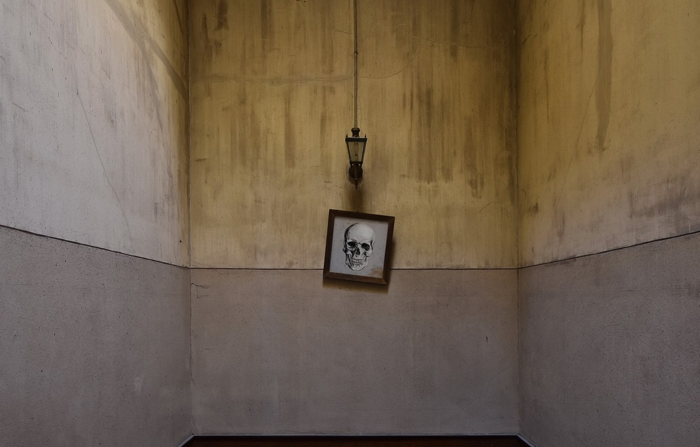 Фото обои комната, череп, светильник