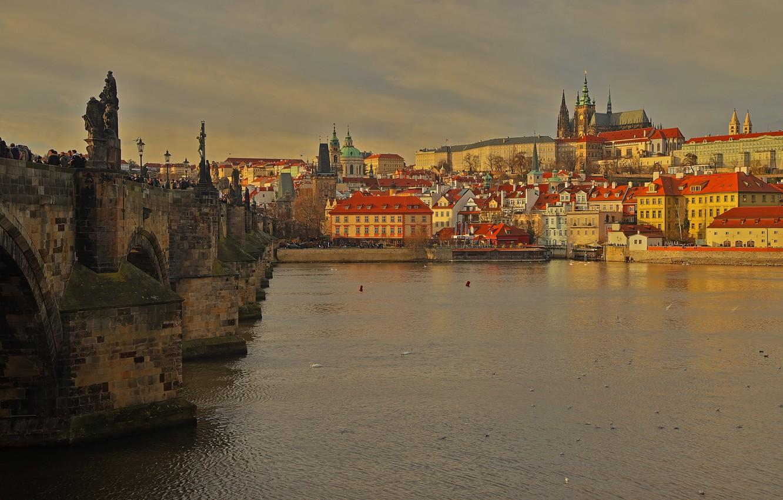 Фото обои река, дома, Прага, Чехия, Карлов мост, Собор Святого Вита