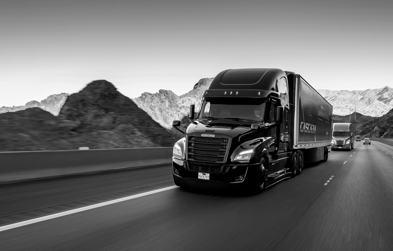 Фото обои чёрный, трасса, Freightliner, седельный тягач, капотный, Cascadia
