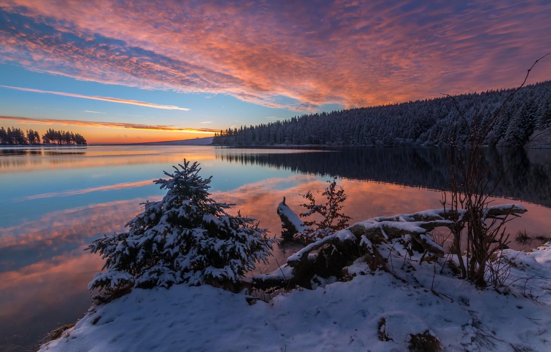 Фото обои зима, лес, снег, пейзаж, природа, река, рассвет, утро, берега