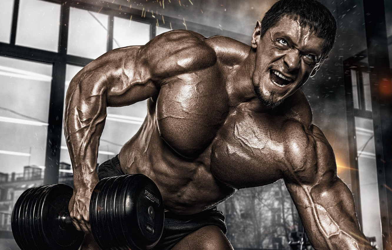 Обои muscle, мышцы, pose, тренировка, гантели, gym, бодибилдер, dumbbells,  bodybuilder, спорт зал, тренинг картинки на рабочий стол, раздел спорт -  скачать