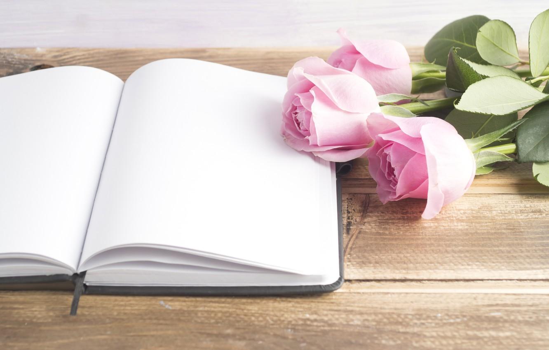 Фото обои розы, книга, розовые, бутоны, pink, flowers, book, roses