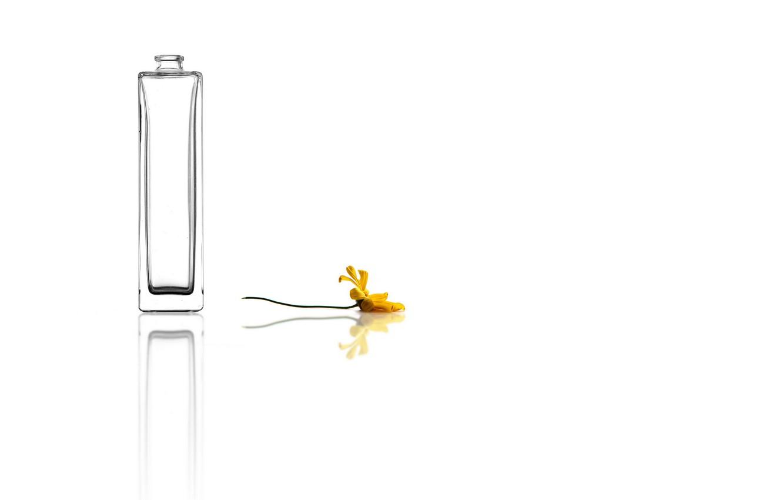 Фото обои цветок, фон, ваза