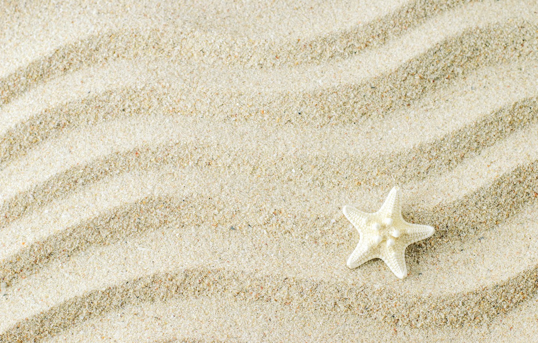 Фото обои песок, фон, морская звезда, beach, texture, background, sand, marine, starfish