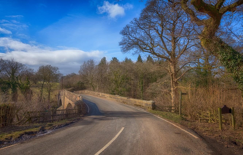 Фото обои дорога, пейзаж, мост, природа, красота