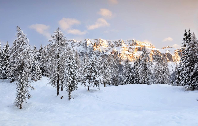 Фото обои зима, горы, природа