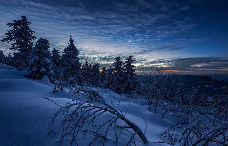 Фото обои зима, небо, снег, деревья, пейзаж, горы, ветки, природа, рассвет, звёзды, утро, Швейцария, ели, Daniel Vogelbacher