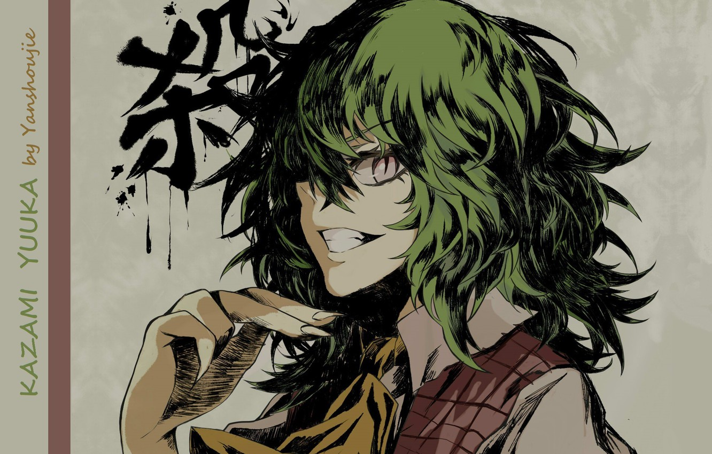 Фото обои зеленые волосы, змеиные глаза, art, Touhou Project, адская ухмылка, Проект Восток, физиономия, Kazami Yuuka, Yanshoujie