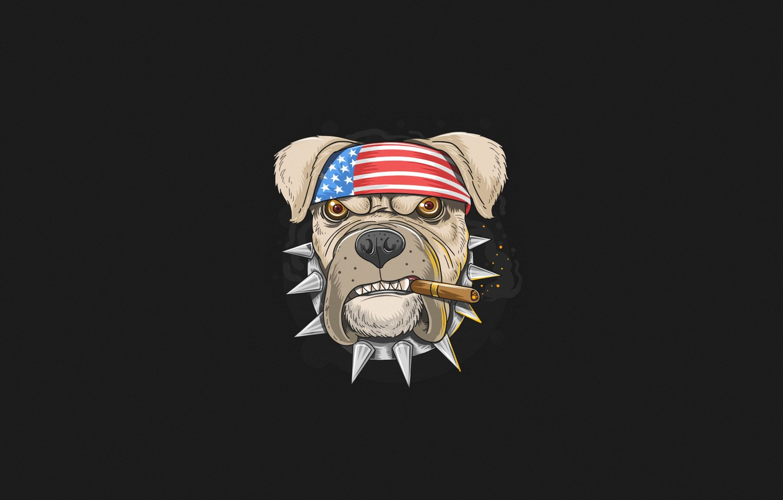 Фото обои Минимализм, Собака, Дым, Стиль, Ошейник, Фон, USA, США, Dog, Арт, Art, Style, Smoke, Пес, Background, …