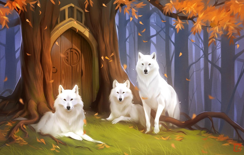 Фото обои лес, волк, дверь, фэнтези, арт, Хранители, Александра Хитрова, GaudiBuendia art