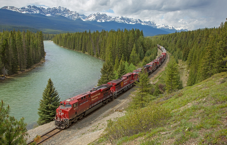 Фото обои лес, пейзаж, озеро, поезд