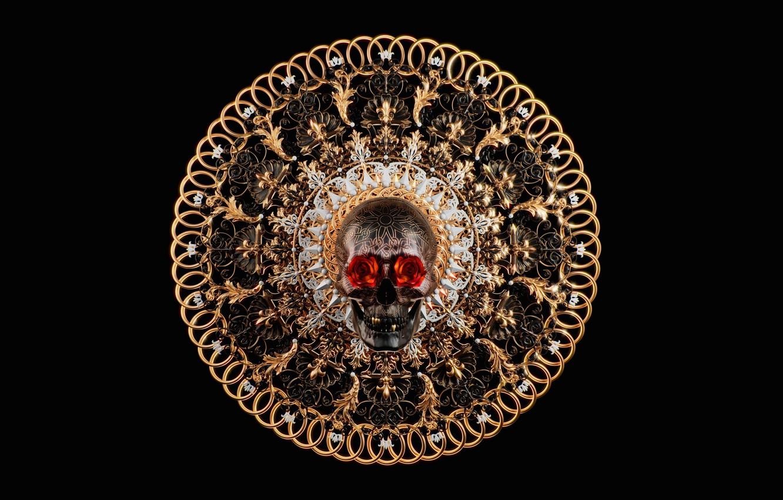 Фото обои роза, череп, арт, Salvatore Miranda, SKULL