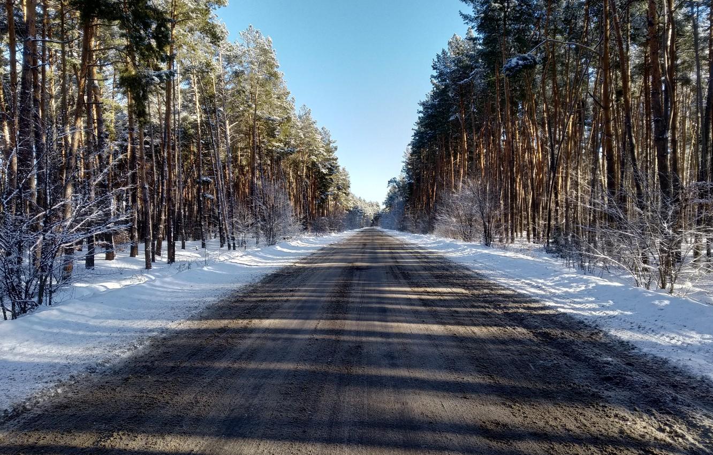 Фото обои зима, дорога, лес, снег, сосны