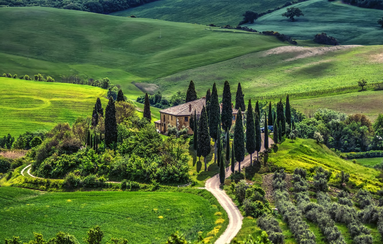 Фото обои дорога, деревья, пейзаж, природа, дом, Италия, луга, Тоскана