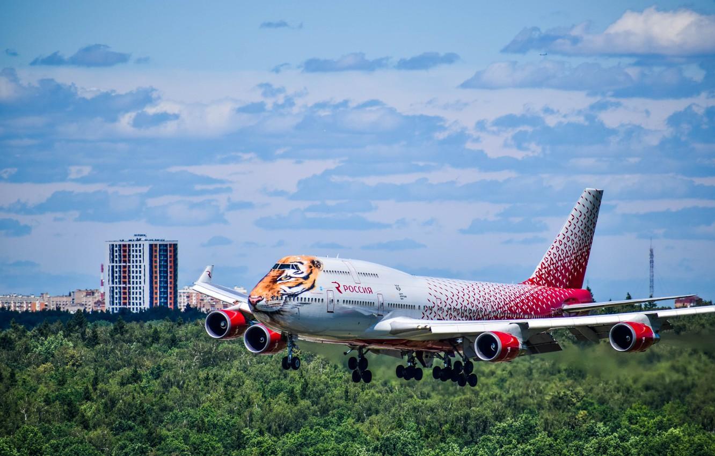 Фото обои небо, самолет, внуково, тигролет, внукинг, споттинг