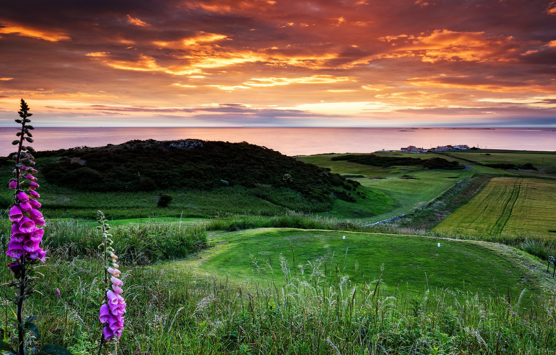 Фото обои Castle, England, Bamburgh, Golf Club