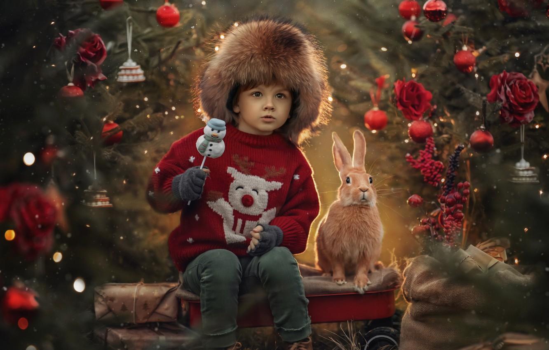 Фото обои украшения, животное, праздник, игрушки, новый год, мальчик, кролик, ёлка, ребёнок, Jansone Dace