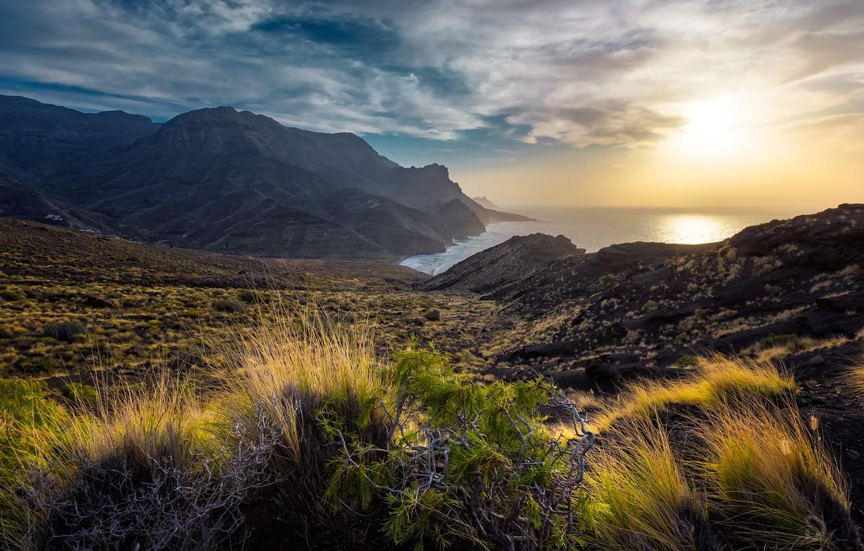 Фото обои трава, пейзаж, закат, горы, природа, океан, побережье, остров, Испания, Канарские острова, Канары, Гран-Канария