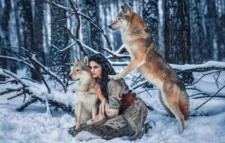 Фото обои зима, лес, девушка, снег, поза, платье, брюнетка, волки, Алёна Беляева, by Александра Савенкова