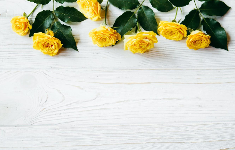 Фото обои цветы, розы, желтые, summer, yellow, wood, flowers, roses