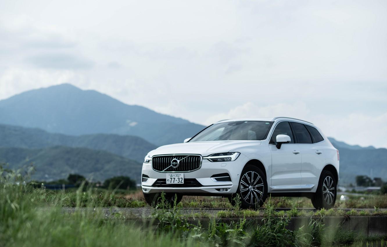 Фото обои белый, трава, Volvo, XC60, Inscription, CUV, B5