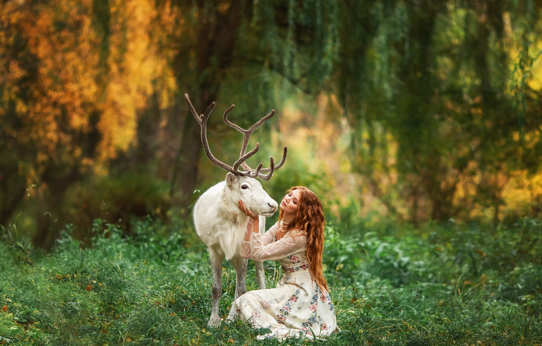 Фото обои лес, девушка, природа, животное, олень, рыжая, Анастасия Бармина